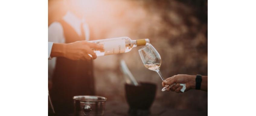 Кому наливать вино в первую очередь. И другие советы по сервировке вина